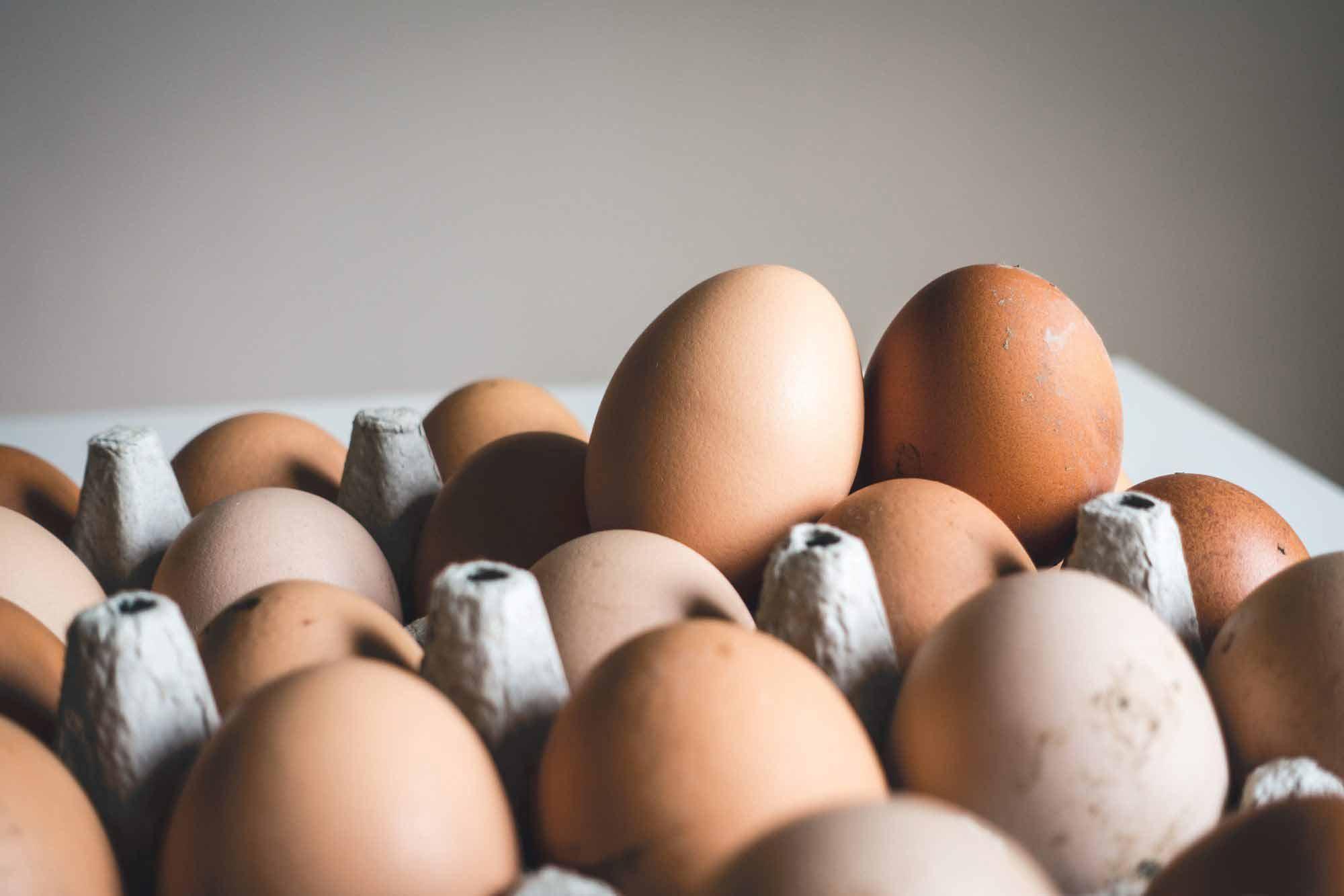 Dutch poison egg alert hits the UK